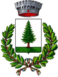 Spazzacamino Alpignano